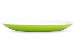 PLASTOVÝ tanier zelený