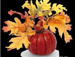 TEKVICA jesenná dekorácia