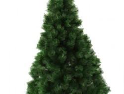 BOROVICA vianočný stromček výška 210 cm