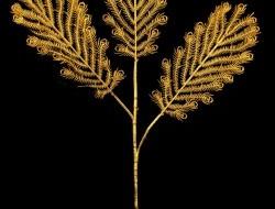 PÁVIE perie zlaté