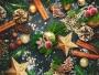 ECOBALSAM aquatix Christmas secrets